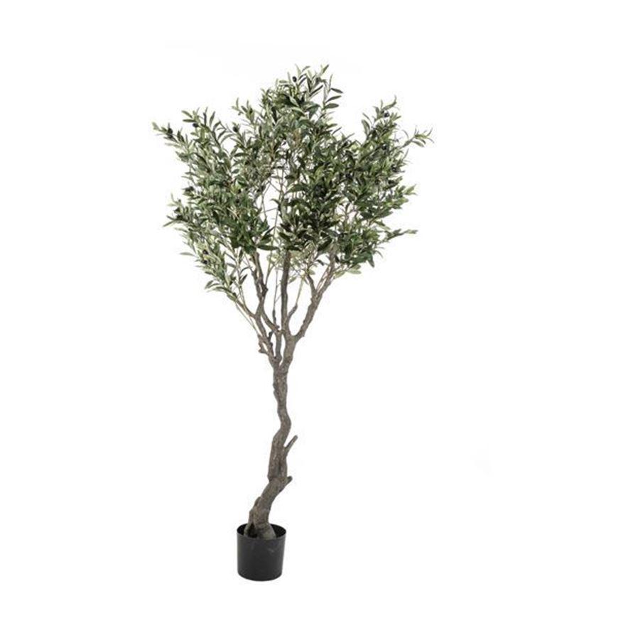 OLIVE tree h200cm green