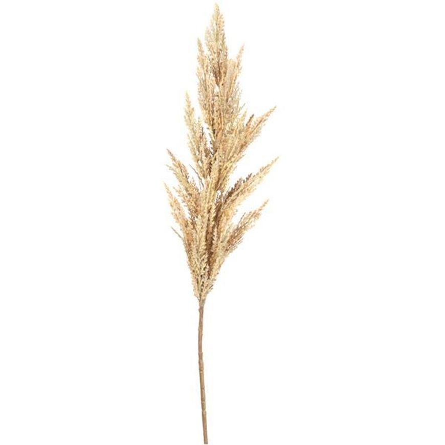 PAMPAS grass stem h120cm white