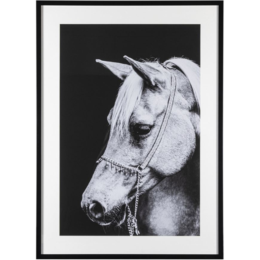 Picture of HORSE White print 107x78 black