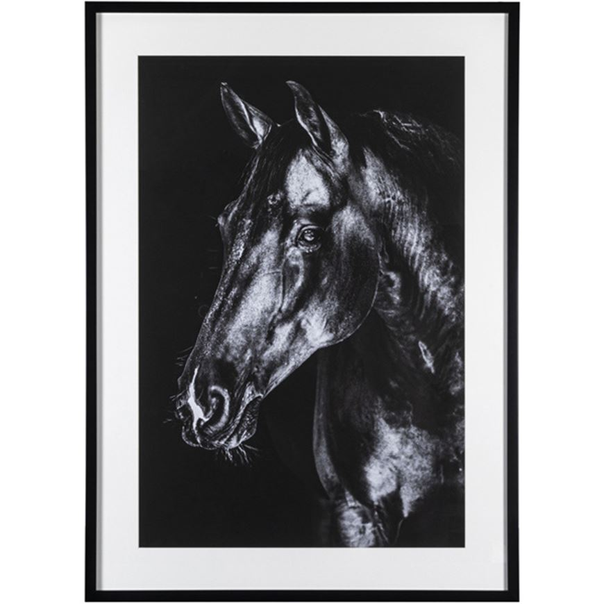 Picture of HORSE Black print 107x78 black